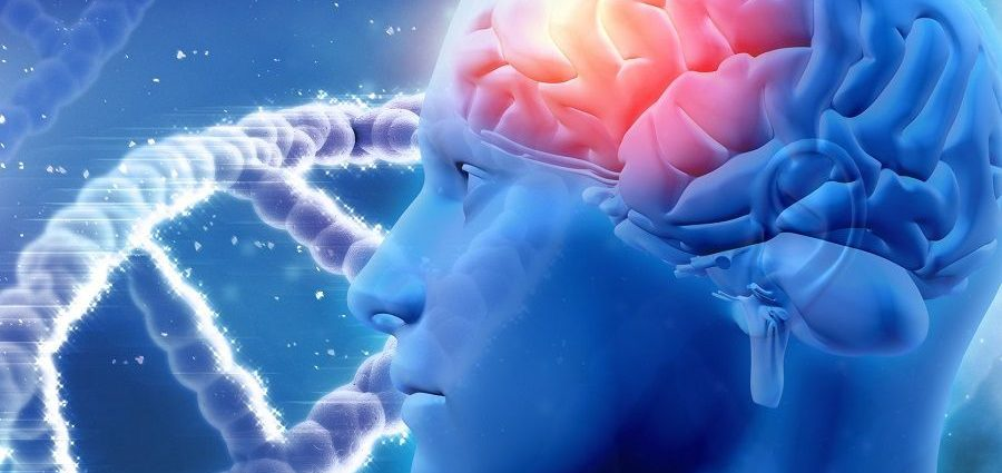 What are the expected benefits you get through Nootropic?